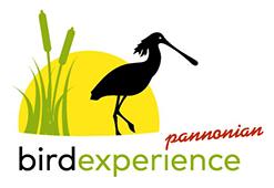 BirdExperience Logo