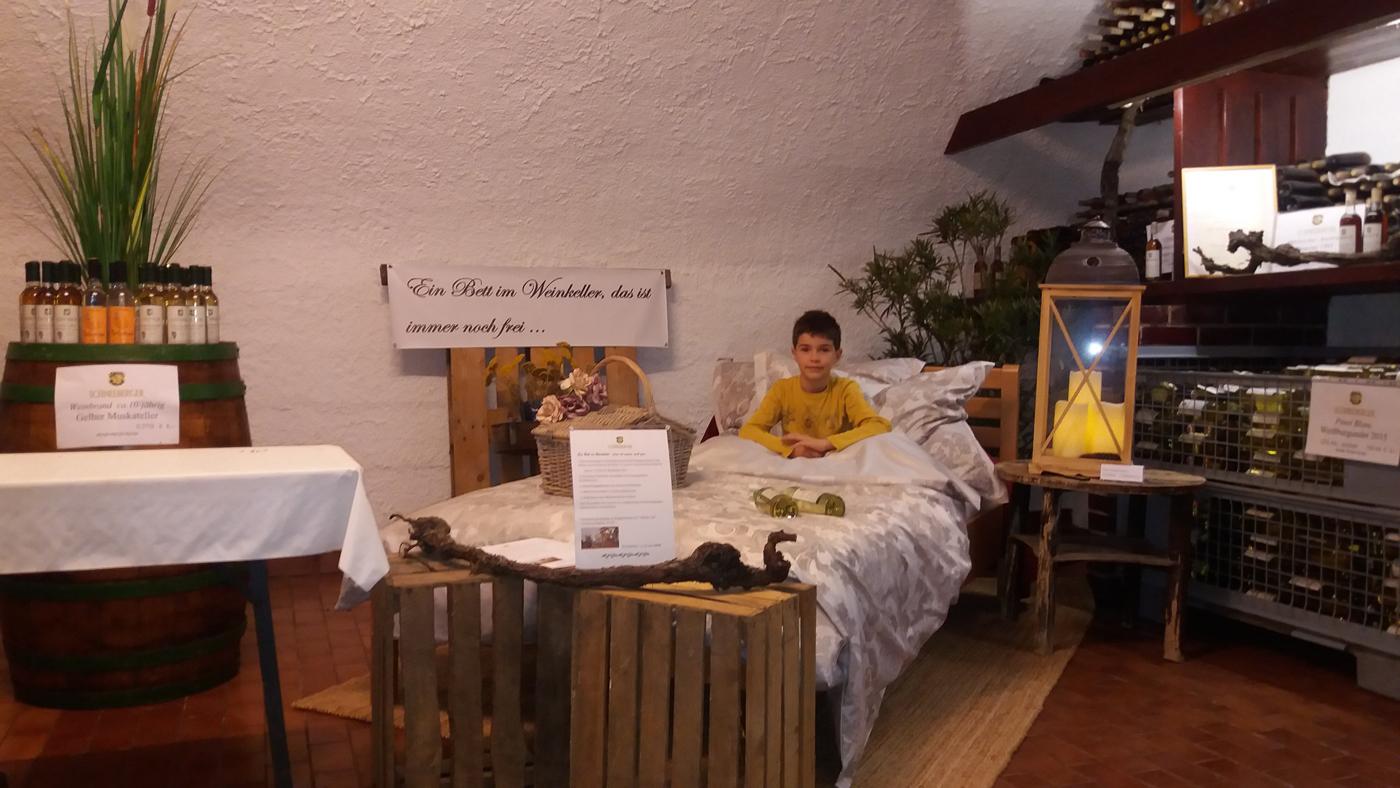 Schneeberger Mörbisch - Übernachten im Weinkeller